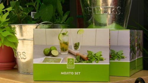 mojito making kit
